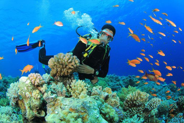 Scuba-Diving-in-Tarkarli