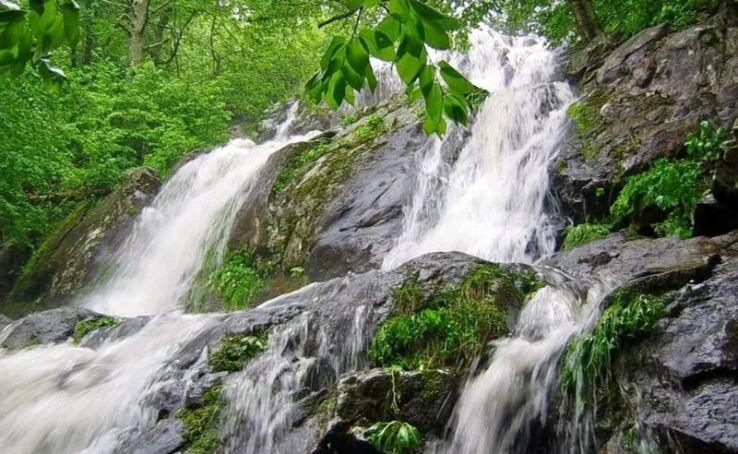 Thusharagiri-Waterfalls