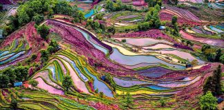 Most colorful places in the world in different seasons