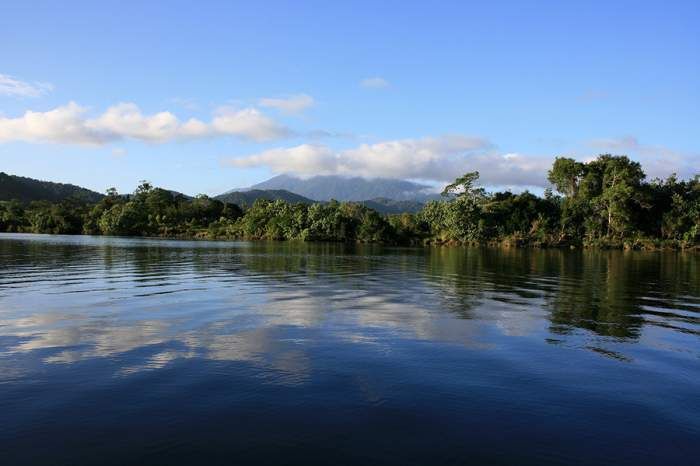 Daintree-River