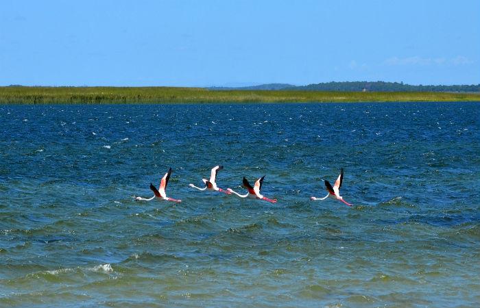 Lake Sibaya