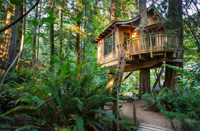 treehouse Seattle