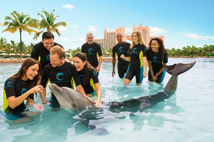 Dolphin Cay Atlantis, Bahamas