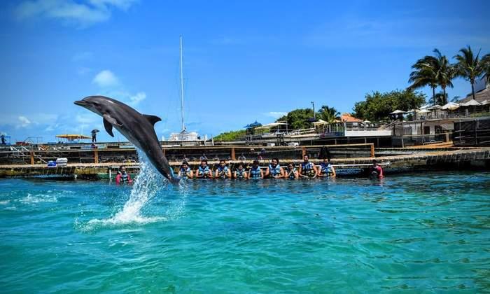 Dolphin Park Mexico