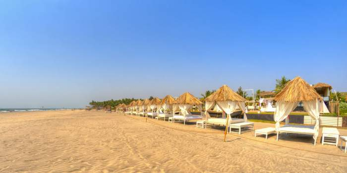 Morjim Beach, Goa