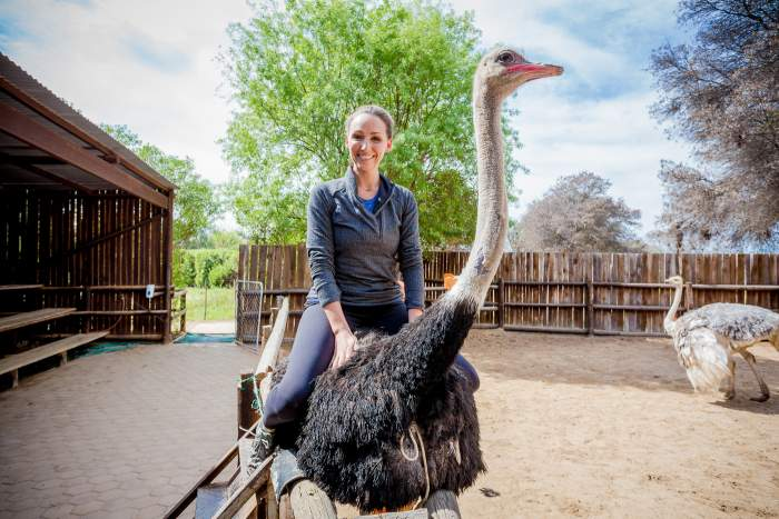 Ostrich Ride In South Africa