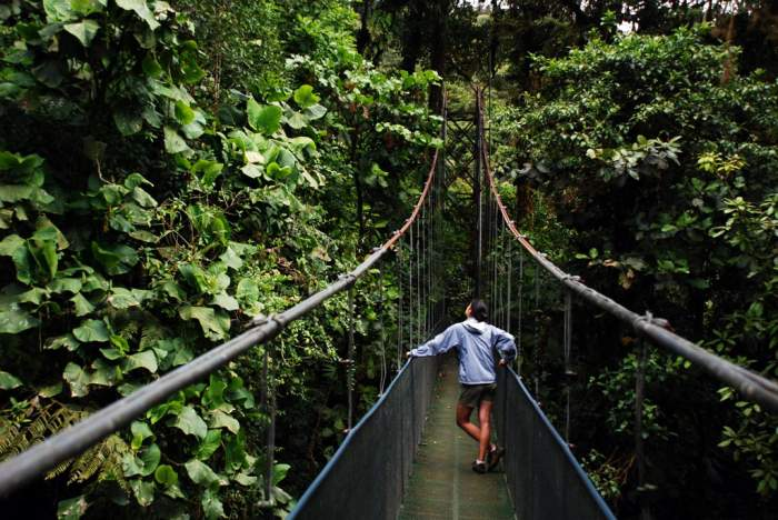 Monteverde hiking costa rica