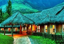 best cottages in Kerala
