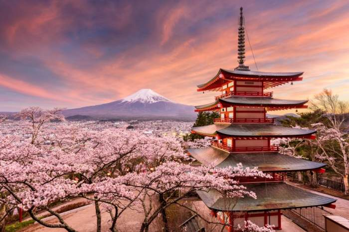 New Spring Flower Cruise In Japan In 2019