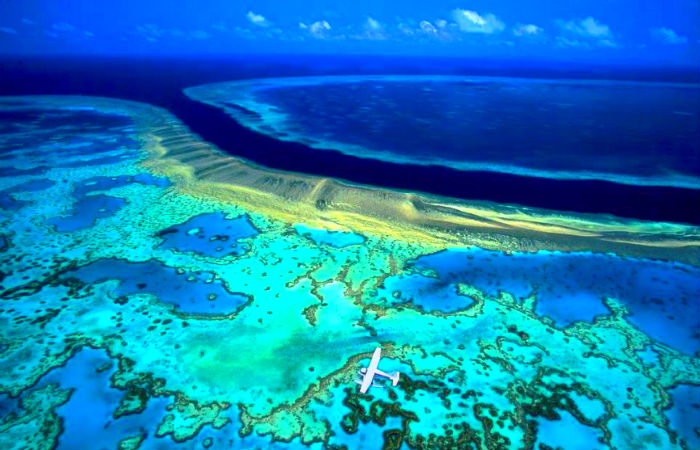 This Coral Barrier Reef Is Even Seen From The Space