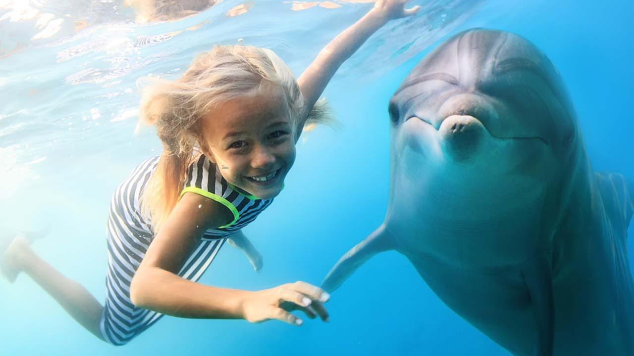 Underwater Worlds In Turkey